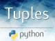 statistics,data science,365 datascience,365datascience,365 data science,Python Tuples,tuples,python programming,